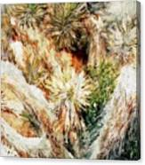 Yucca Cool Patch  Canvas Print