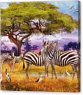 Zebras Canvas Print