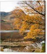 Buttermere Canvas Print
