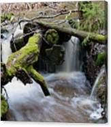 Rapids Canvas Print