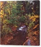 102701-18 Canvas Print
