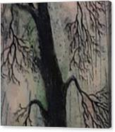 #1081 Perfect Balance Canvas Print