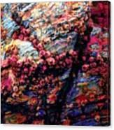 109 Canvas Print