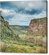 10901 Owyhee Canyon Canvas Print
