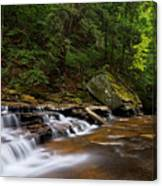 Brandywine Creek Falls Canvas Print