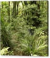 Jungle 31 Canvas Print