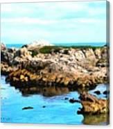 West Coast Seascape 2 Canvas Print