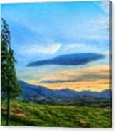 Nature Oil Canvas Landscape Canvas Print