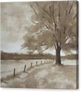 124s Sepia Canvas Print
