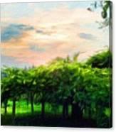 Oil Painting Landscape Pictures Nature Canvas Print