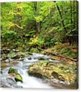 1266 Great Smoky Mountain National Park Canvas Print