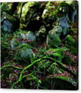Fontainebleau Forest Canvas Print