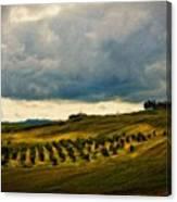 Landscape Planting Canvas Print