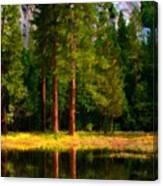 Landscape Poster Canvas Print