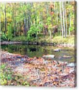 Pennsylvania Stream In Autumn Canvas Print