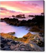 Scenery Oil Paintings On Canvas Canvas Print