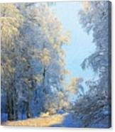 Nature Pictures Of Oil Paintings Landscape Canvas Print