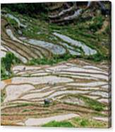 Longji Terraced Fields Scenery Canvas Print