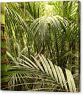 Jungle 64 Canvas Print