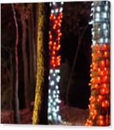 Christmas Season Decorations And Lights At Gardens Canvas Print