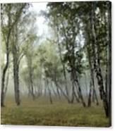 New Landscape Canvas Print