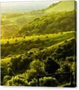 Nature Landscape Pictures Canvas Print