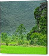 The Beautiful Karst Rural Scenery Canvas Print