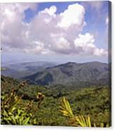 The El Yunque National Forest, Puerto Rico Canvas Print