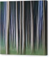 150403p262 Canvas Print