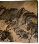 Chauvet Canvas Print