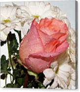 Beautiful Rose Canvas Print
