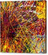16-10 String Burst Canvas Print