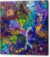16-6 Lambda Sky Canvas Print