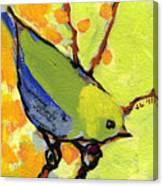 16 Birds No 2 Canvas Print