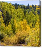 Crystal Creek Autumn Canvas Print