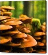 Nature Oil Paintings Landscapes Canvas Print