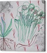 Kintu And Nambi Kwanjula Canvas Print