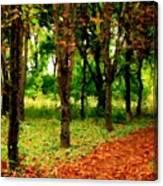 Landscape View Canvas Print
