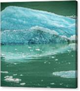 Magnificent Sawyer Glacier At The Tip Of Tracy Arm Fjord Canvas Print