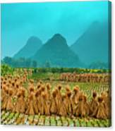 Beautiful Countryside Scenery In Autumn Canvas Print