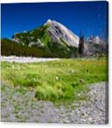 J P Landscape Canvas Print