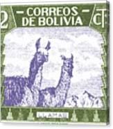 1939 Bolivia Llamas Postage Stamp Canvas Print