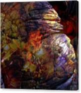 1999 12 12 Canvas Print