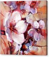 1almonds Blossom  13 Canvas Print