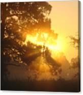 1.sunrise Canvas Print
