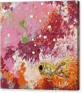 1 Gold Fish Canvas Print