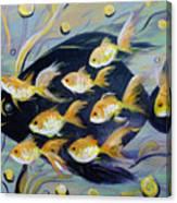 8 Gold Fish Canvas Print
