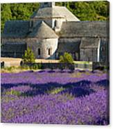 Abbaye De Senanque Canvas Print