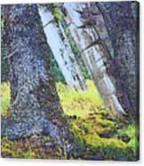 Ancient Totems Of Haida Gwai Canvas Print