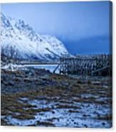 Arctic Reflections Canvas Print